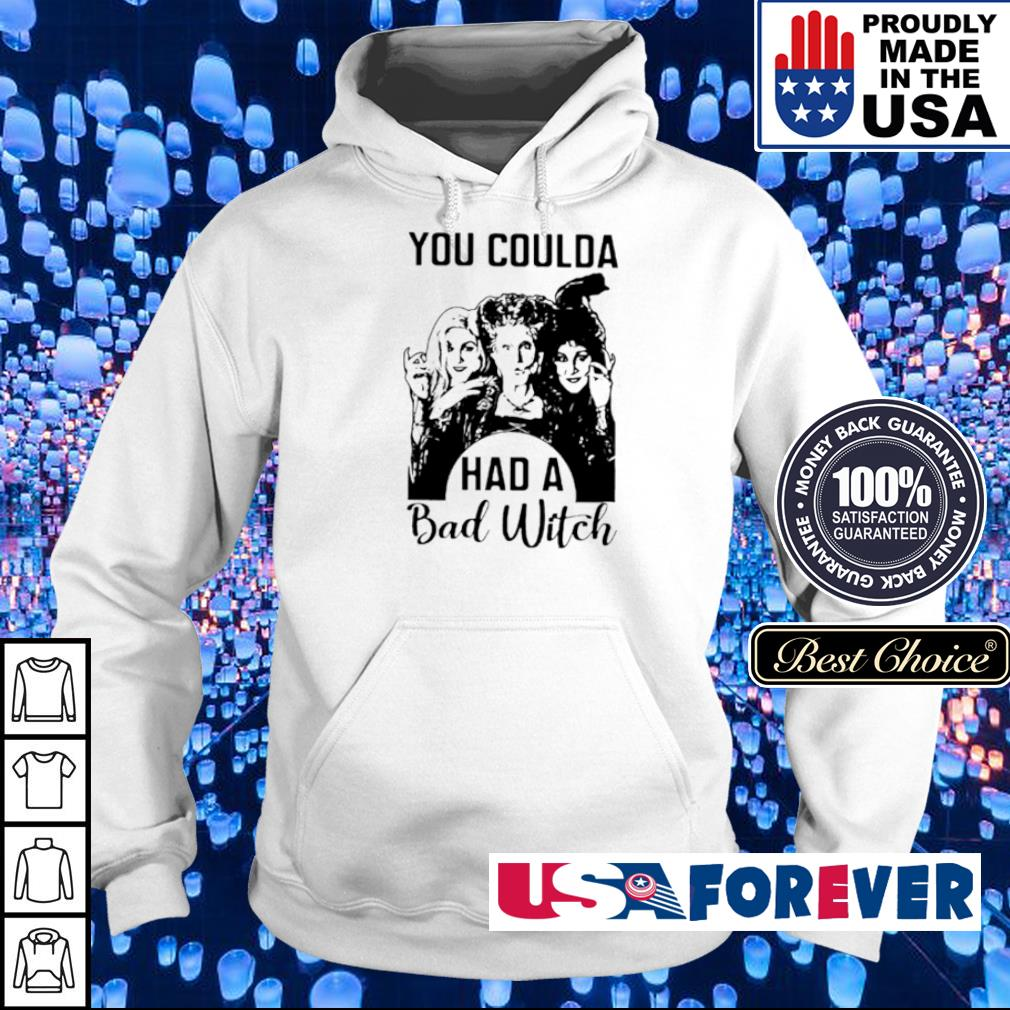 Hocus Pocus You coulda had a bad witch s hoodie