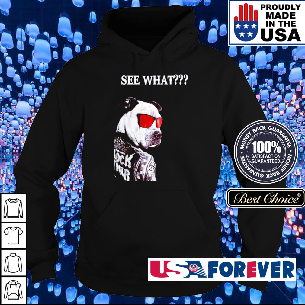 Gang Pitbull Rock Tour See What s hoodie