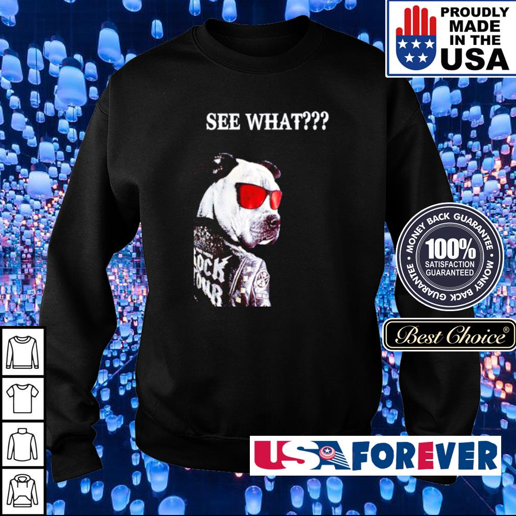 Gang Pitbull Rock Tour See What s sweater