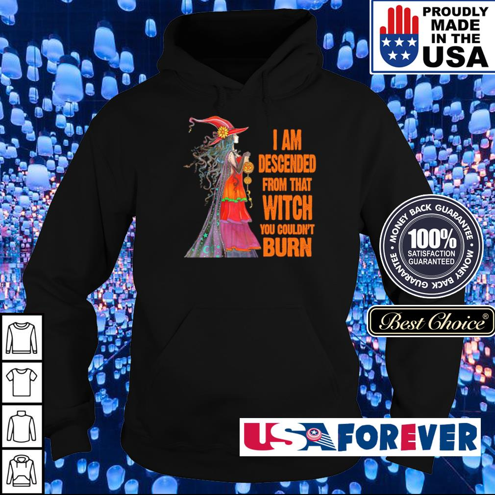 Witch I am descended from that witch you couldn't burn s hoodie